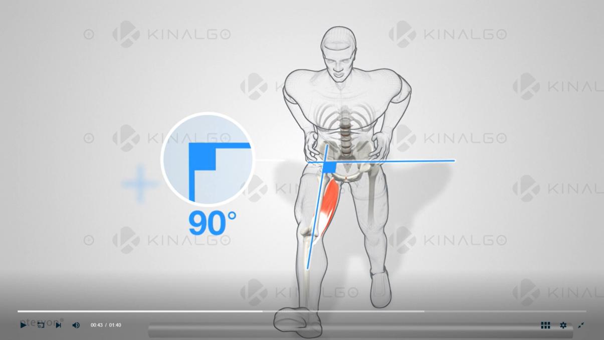 Kinalgo Corporate - Application screenshot Bilan Etirement bas du corps - Etirement passif des Ischio-Jambiers debout avec support d'appui